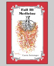 Fall Ill Medicine, Carrie Seitzinger